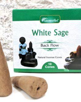 CONES BACK FLOW WHITE SAGE pour PE Fontaine résine ou céramique  –  (couleurs végétales)