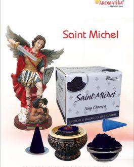 AROMATIKA POUDRE ENCENS 100g (avec kit pour cônes) SAINT MICHEL – Parfum NAG CHAMPA (couleur naturelle)